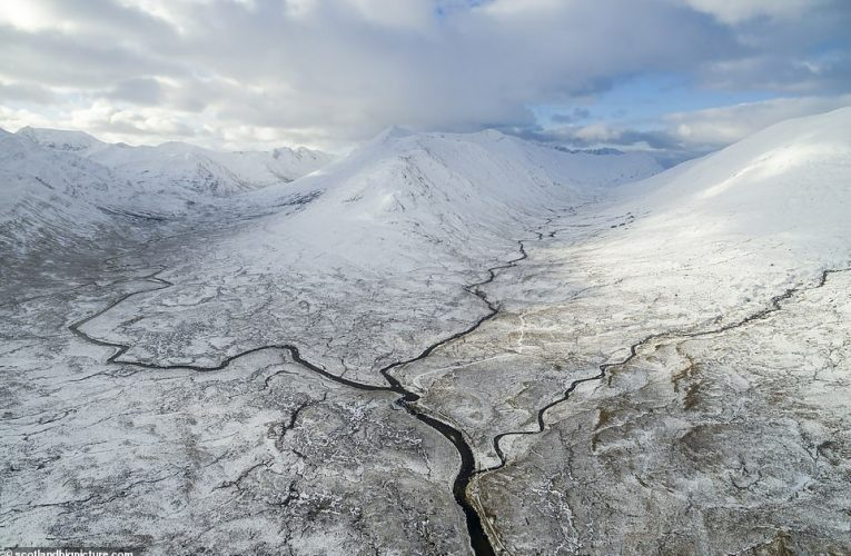 Book Scotland A Rewilding Journey contains amazing images and argues for an even wilder Scotland